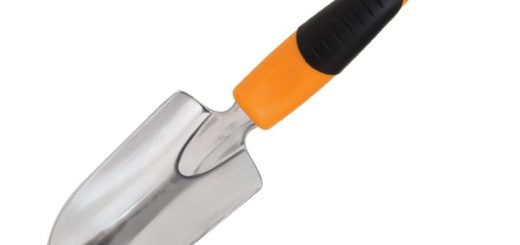Items Every Gardener Should Own - Trowel